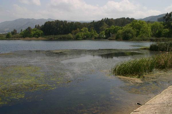 170509_Ayia-lake-day3
