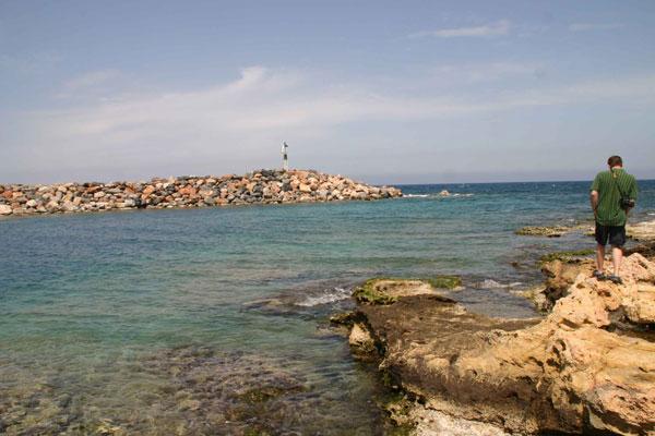 170509_Kevin,-sea-natrix-day2