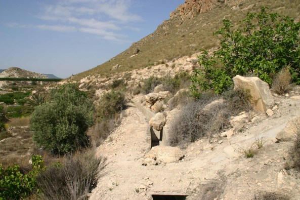 Dry canal used to water fruit groves, now a habitat for snakes and lizards