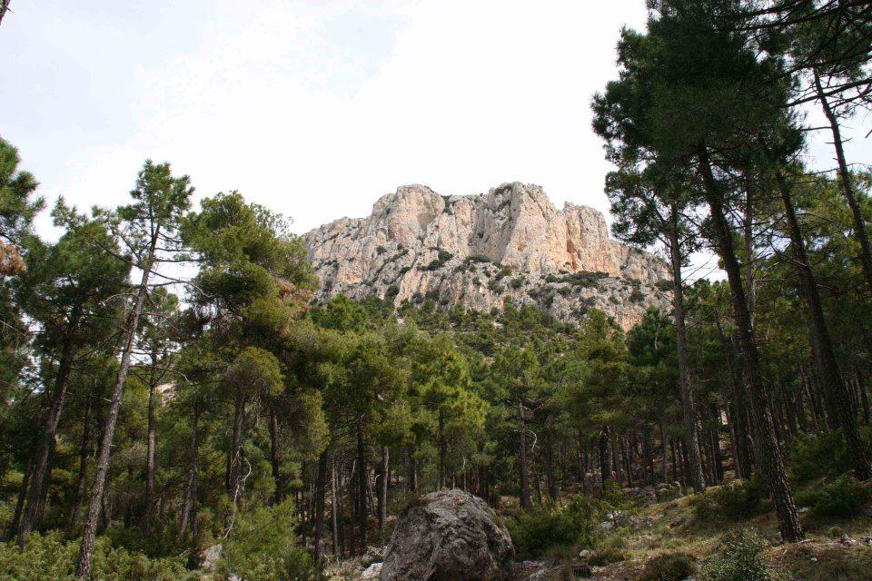 La sierra de Espuña
